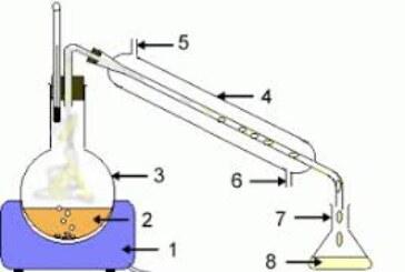 دانلود دستور کار آزمایشگاه شیمی آلی 1 جواد صفری